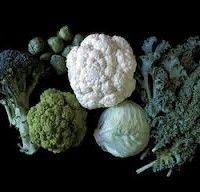 Sorti brokule