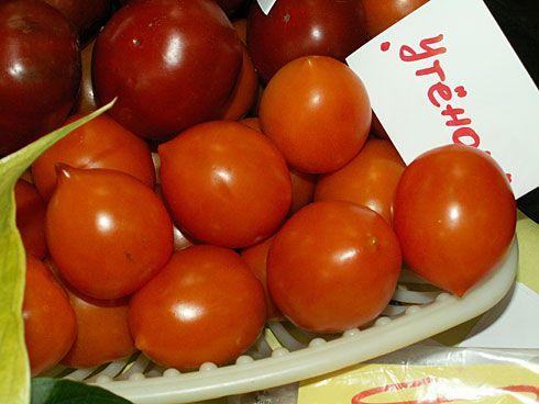 Pače sorte paradajza
