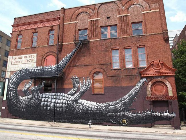 Krokodil leži na leđima, uredno uklopljena u vatru bijeg.