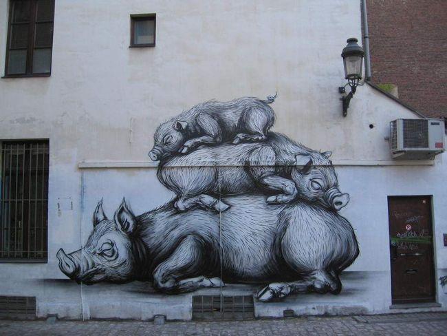 Piramida svinja.