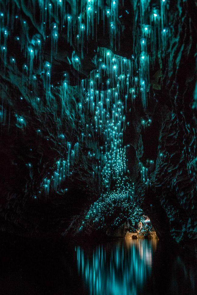 Светящиеся черви в пещерах вайтомо (waitomo caves), новая зеландия