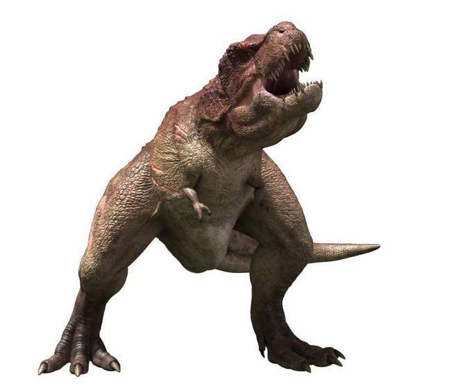 Tarbosaurus (Tarbosaurus).