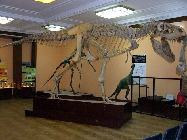 Okosnicu Tarbosaurus.