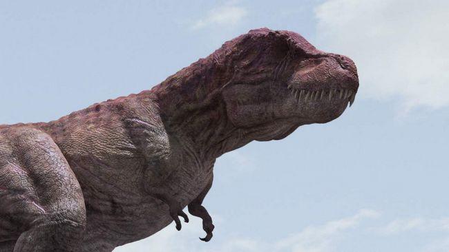 Tarbosaurus je predator, jede strvina.