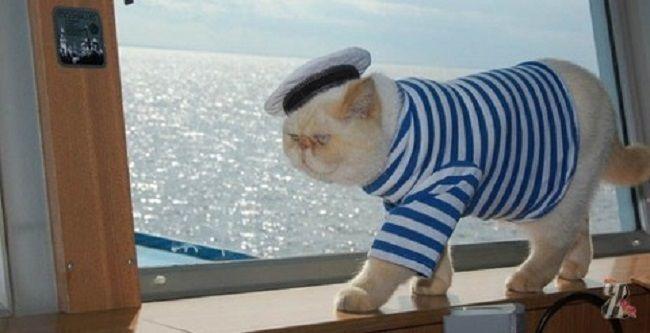 sada Sailor