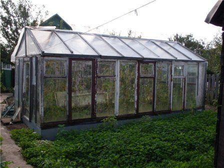 Greenhouse od starih prozorskih okvira