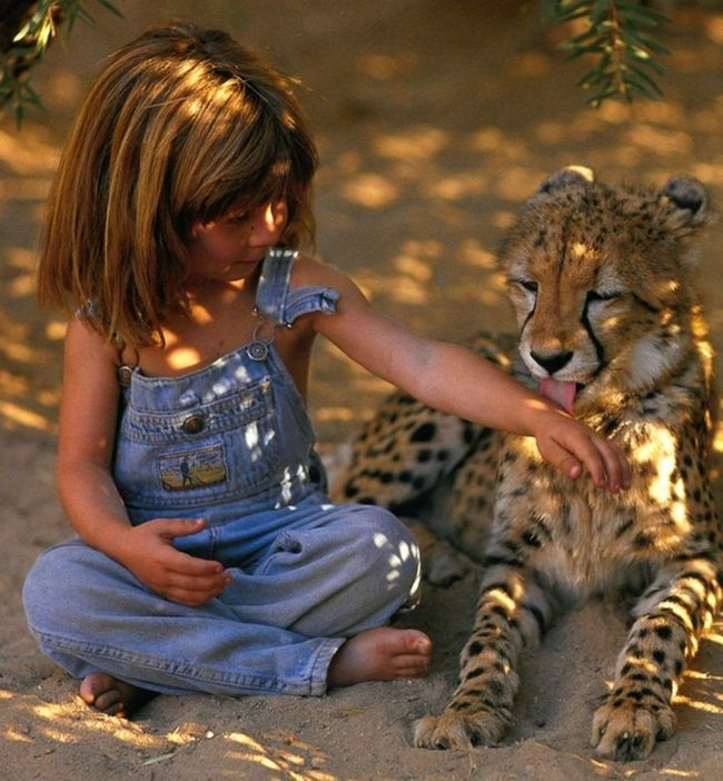 Tippi Degre - dítě wild