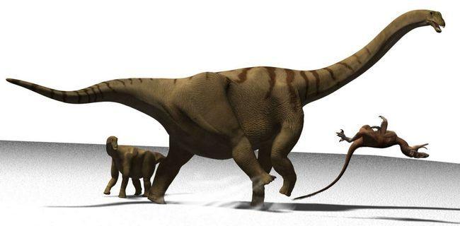 Titanosaurs (lat. Titanosauria)
