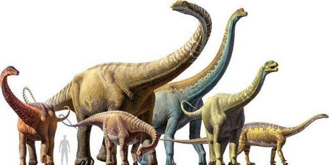 Usporedba veličine Titanosaurs.