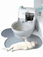 cat WC