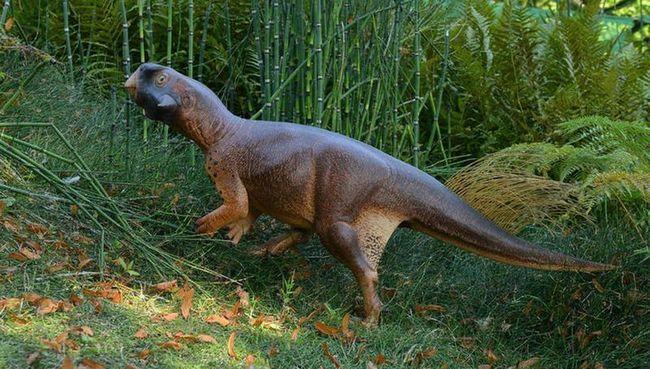 У динозавров впервые обнаружен камуфляж