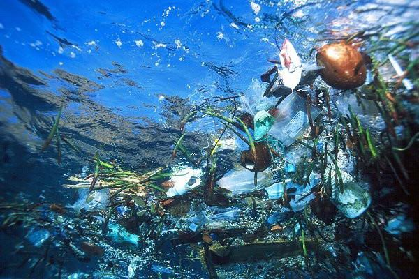 Pada u ocean smeće - uglavnom plastika - je uvrnut kazaljke na satu, koja se proteže stotinama kilometara, oko pola puta između Japana i SAD-West Coast.