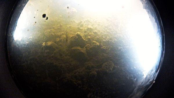 Tako je dno jezera čarapa Uillansa vidjela u njemu video kamera.