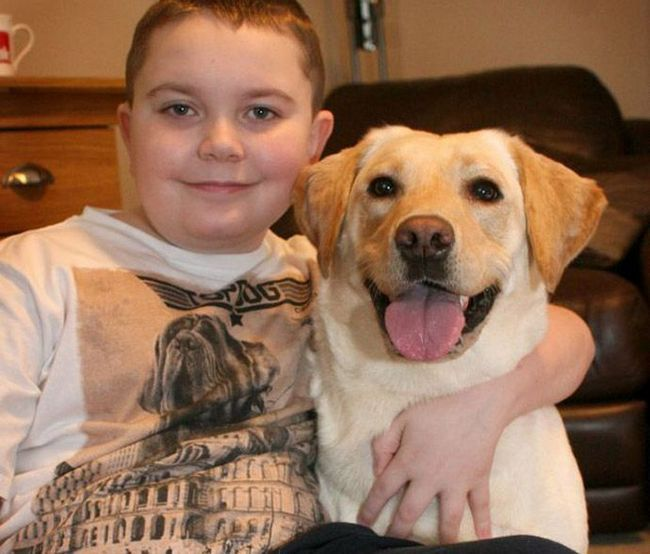Умный пес научился заботиться о больном мальчике