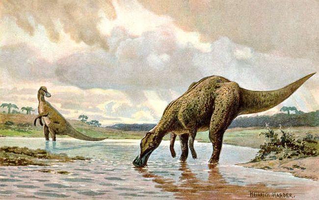 Утконосые динозавры зимовали в арктике