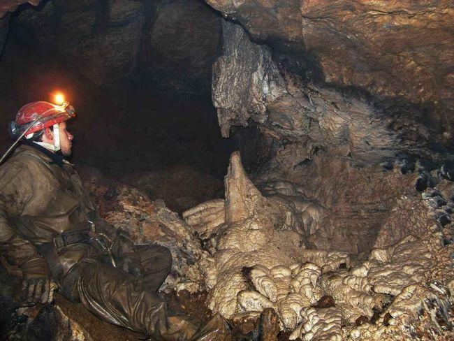 Jeskyně Kek-Tash našel neznámých druhů živočichů.