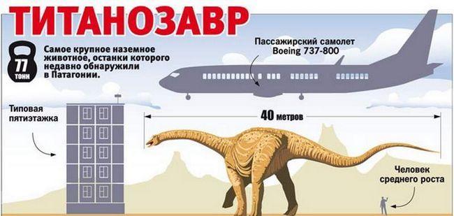 Dimenzije titanosaur odnosu naših uobičajenih količina.