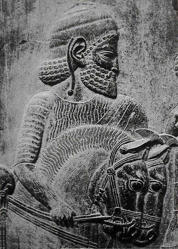 Caspian kone na stenách paláca v Persepolis.