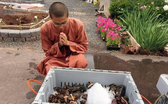 В канаде буддийские монахи выпустили на волю 272 килограмма лобстеров