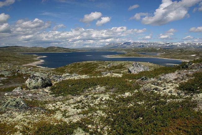 Hardangervidda National Park - jedan od najljepših mjesta u Norveškoj.