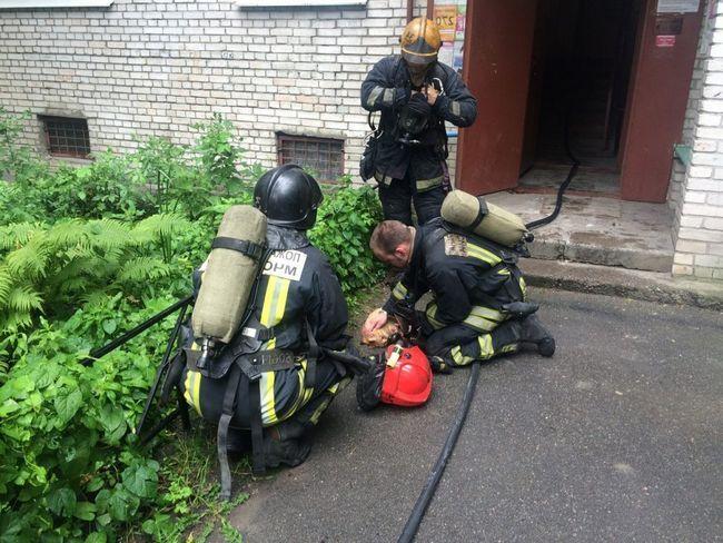 Во время пожара рыжий успел надышаться дымом настолько, что потерял сознание.