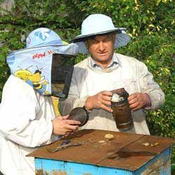 včelárstvo začiatočníkov