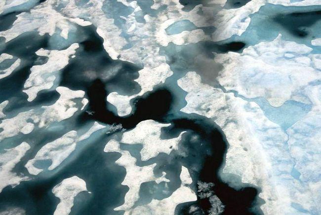 Leda veći dio godine pokrivena Arktičkog okeana, najmanji okeana na Zemlji. (Norbert Rosing)