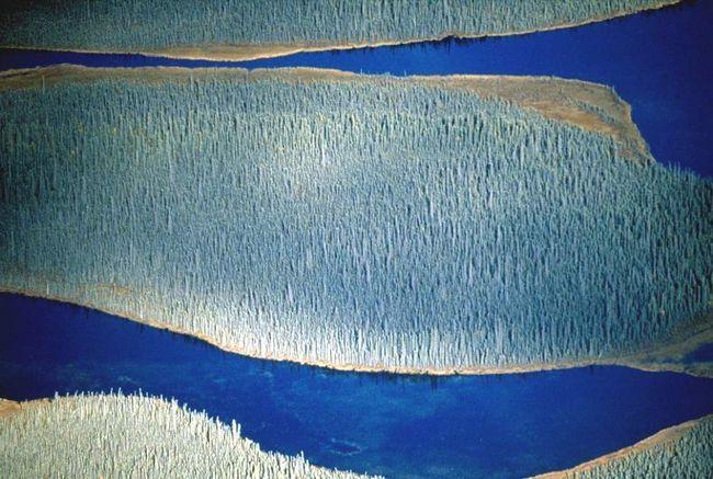 teče voda u Nacionalnom parku, Wrangell-Saint Elias na Aljasci. Najveći među Nacionalnog parka Sjedinjene Države, Wrangell-St Elias je najveći klaster glečera u Sjevernoj Americi. (Frans Lanting)