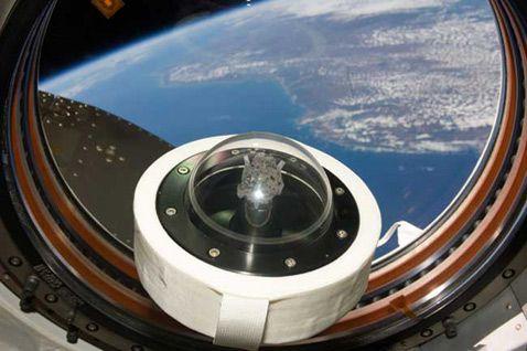 Кусочек лунной породы, привезённый на Землю экипажем в 1969 году после первой высадки людей на нашем естественном спутнике. В прошлом году он побывал на МКС (на снимке камень виден на фоне Земли) в ознаменование сорокалетия того знаменитого полёта (фото NASA).