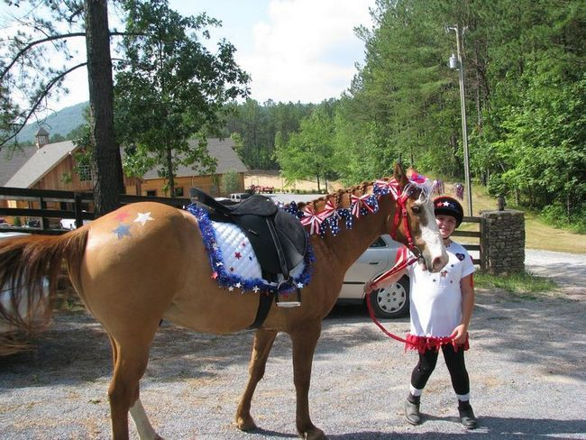 Vtipné kostýmy kone a ich jazdci