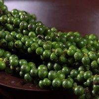Zelené korenie